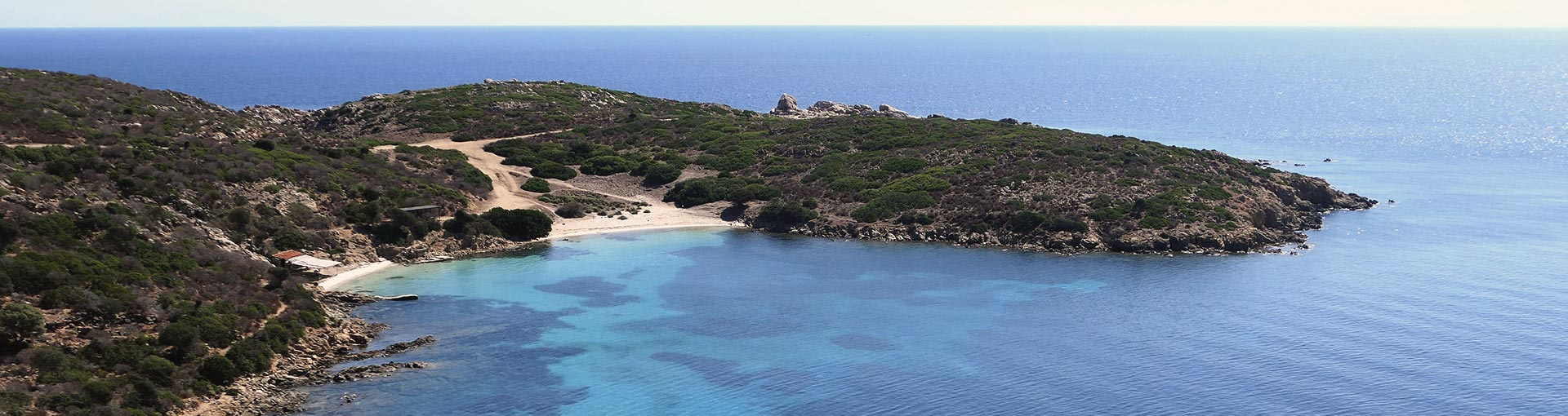 asinara-featured-img