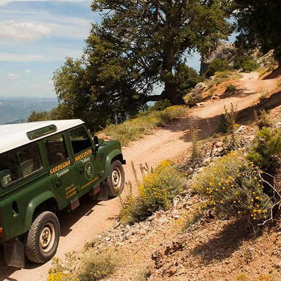jeep-orizontal