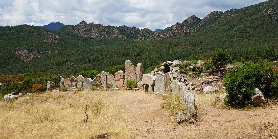 tomba-giants-osono-orizontal